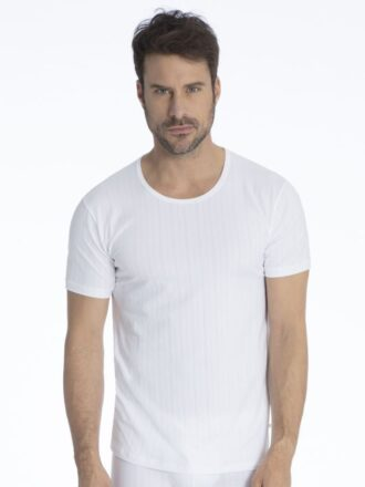 Calida T-Shirt 14886